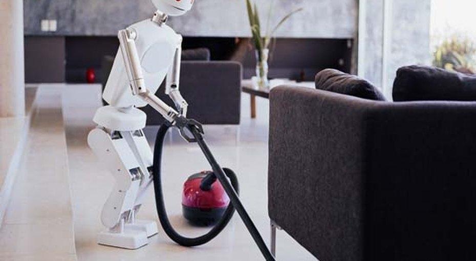 Робот-домохозяйка: заи против