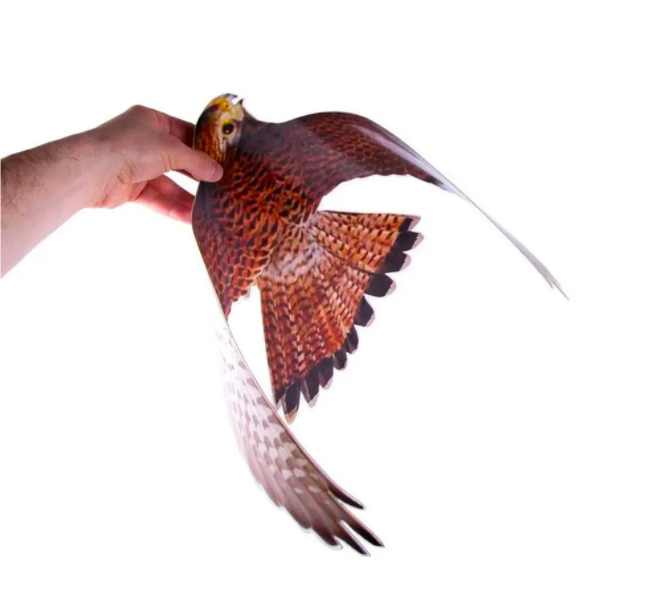 Чучело хищной птицы для отпугивания