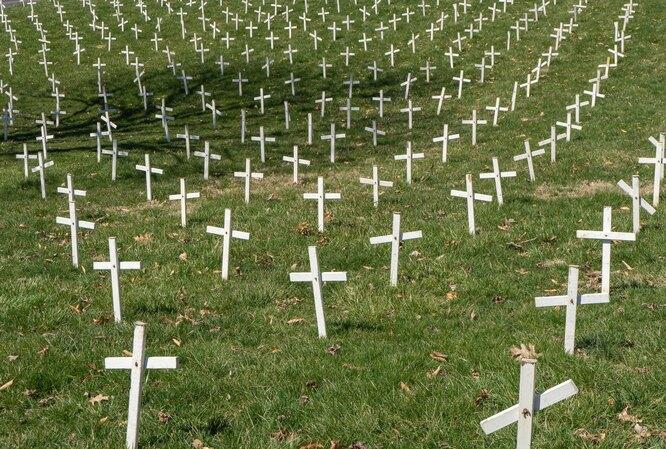 «Поля ангелов» — кладбище, где похоронены абортированные эмбрионы