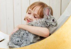 Издеваться над животными больше нельзя. С 1 января в России запрещены контактные зоопарки