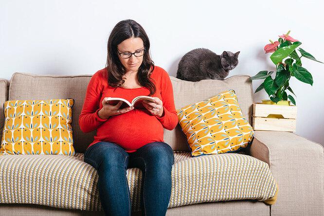 Не смотри накрасное, срочно выбрось кошку: советы, которыми мучают беременных