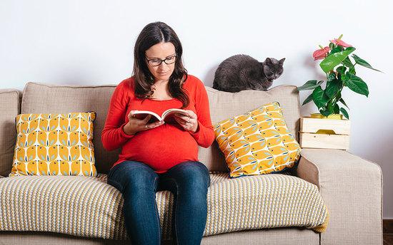 Не смотри накрасное, срочно выбрось кошку: Советы, которыми замучивают беременных