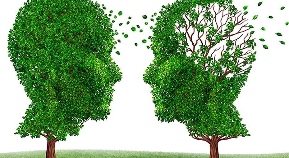 Вспомнить всё: можно ли вылечить деменцию?