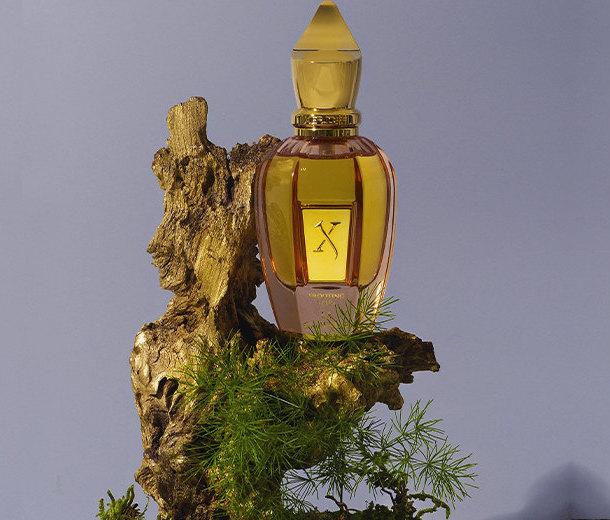 Редкая нота. Что такое нишевая парфюмерия икому она подходит?