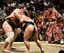 «Весело побеждать старших»: 10-летний сумоист весит 85 кг игордится этим