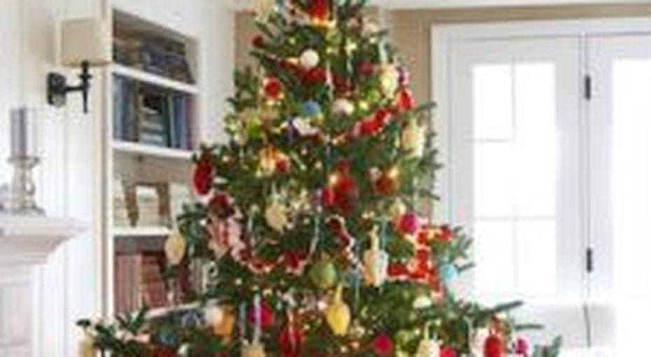 Четверть россиян все еще неубрали новогоднюю елку