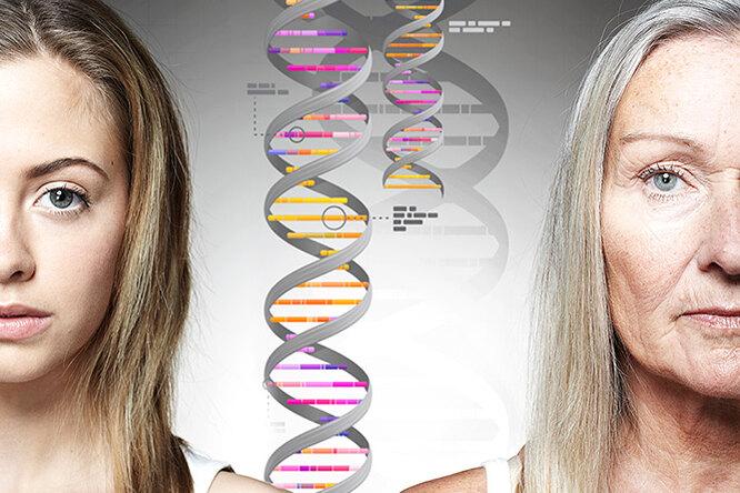 Гены пальцем неразмажешь: кто вответе заголливудскую улыбку ипышную грудь
