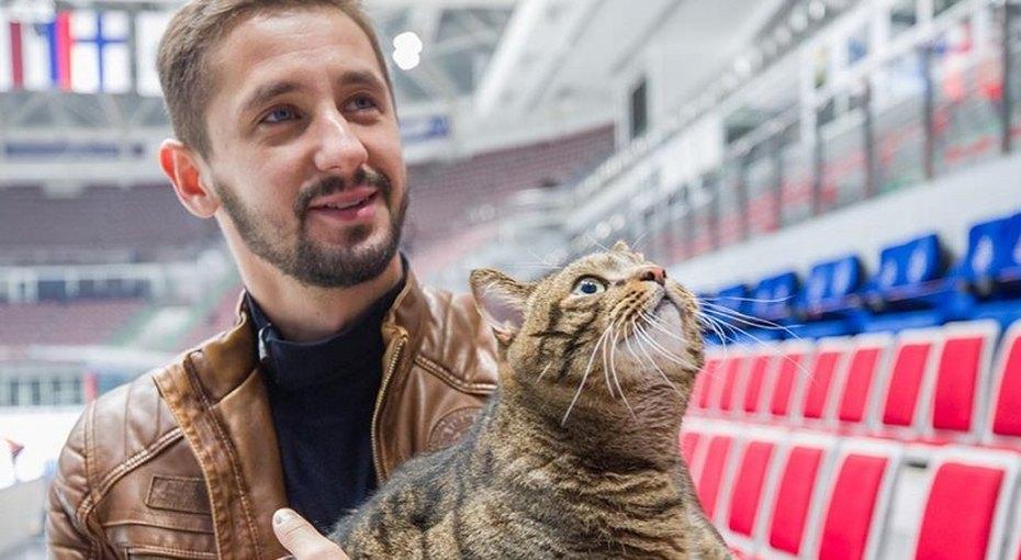 Хозяин ставшего знаменитым «толстого кота» направил волну популярности намилосердие