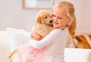 Мама, купи собаку: кто будет в итоге отвечать за питомца?