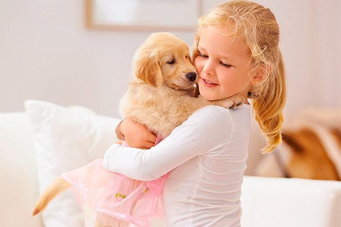 Мама, купи собаку: кто будет витоге отвечать запитомца?