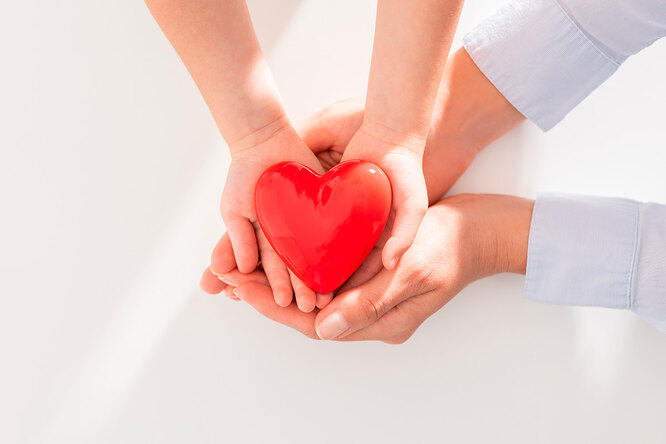 Что такое возраст сердца ипочему важно его знать?