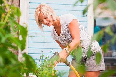 Самые нужные садовые инструменты – проверьте свой комплект!
