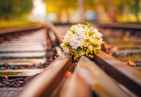 Женщина вышла замуж за железнодорожную станцию и «иногда занимается с ней сексом»