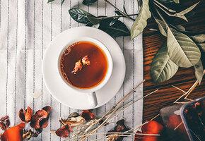 Наука доказала: чай останавливает рост жировых клеток. Как правильно его пить?