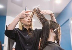 Как часто на самом деле надо стричь волосы?
