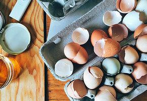 10 причин невыбрасывать яичную скорлупу, если увас есть дача