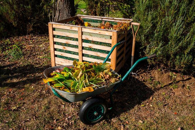 Как приготвоить удобрение для сада из травы, крапивы, комоста