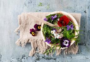 10 съедобных цветов, которые вы можете вырастить на даче