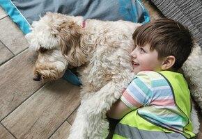 Мальчик с аутизмом боялся стоматолога, пока ему не помогла собака