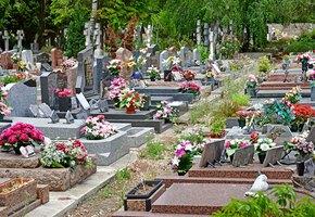 Гроб, кладбище, сотни миллиардов рублей. Как чиновники, силовики и бандиты делят похоронный рынок — и при чем тут Тесак