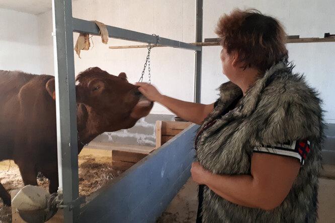 Лариса Молнар и корова, которую семейство завело в экопоселении