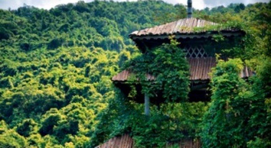Гид потропическому острову Хайнань