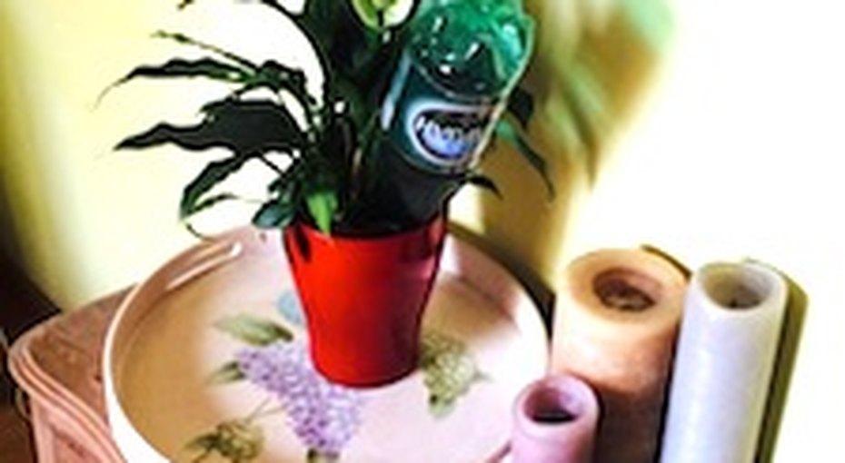 Как сохранить цветы, если вы собрались вотпуск