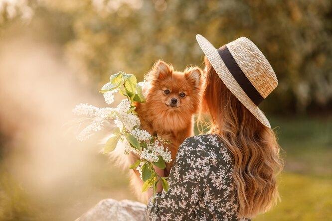 «Поездки ссобакой – это счастье!»