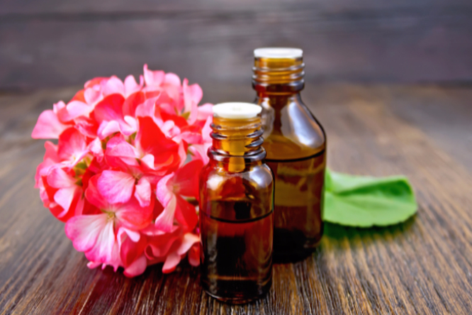 11 проблем сволосами — 11 рецептов. Натуральные масла дляздоровья ваших волос