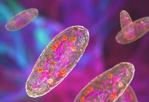 Ученые нашли первого человека, заразившегося 5 тысяч лет назад чумой