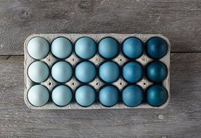 Подставки для яиц на Пасху: 8 идей