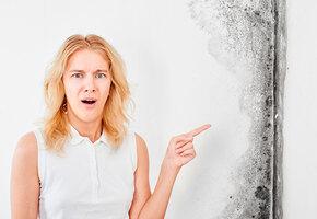 Аллергия на плесень: как распознать и можно ли вылечить?