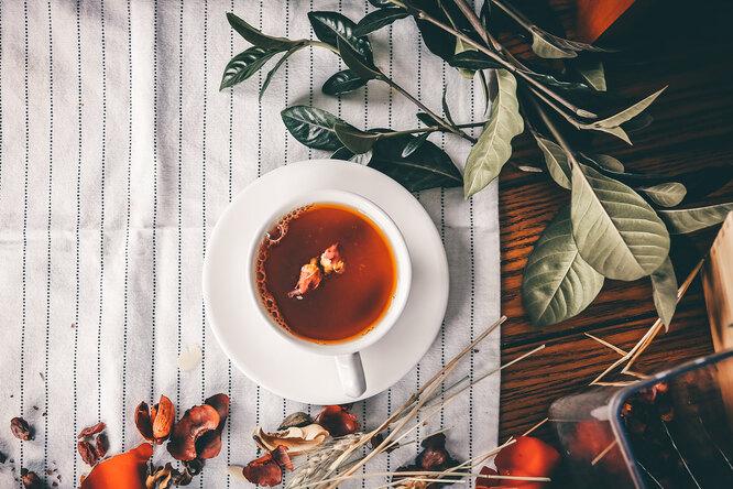 6 аптечных чаев, которые нестоит пить безназначения врача
