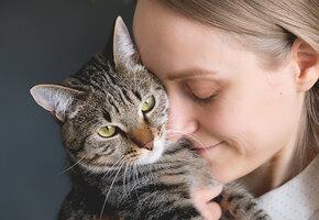 Женщина спасла кошку, прожившую всю жизнь в клетке. Вот как она ее благодарит