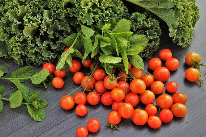 10 рецептов сзелеными салатами. Романо, латук, корн, фризе, радичио идругими