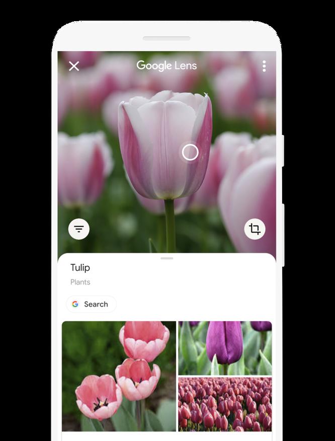 Приложение GoogleLens