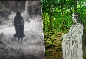 Лихолесье: 6 загадочных лесов, где живут призраки
