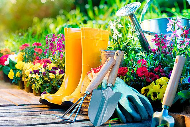 Мечта дачника: 10 полезных садовых гаджетов дешевле 500 рублей