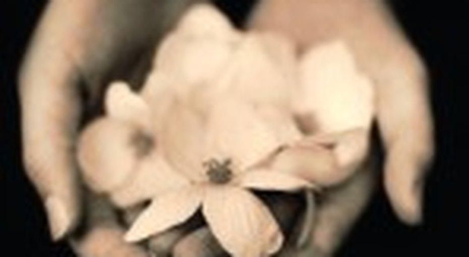Прощение - подарок самой себе
