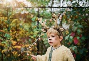 «Обычное дело»: ребенок подружился с оленем и привел его домой