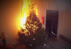 Огонь Нового года. Как не допустить того, чтобы елка загорелась