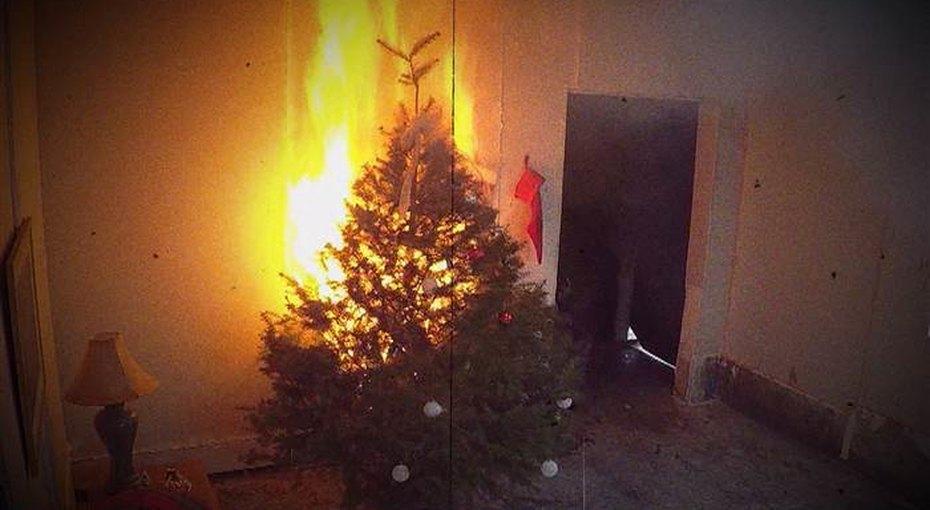 Огонь Нового года. Как недопустить того, чтобы елка загорелась
