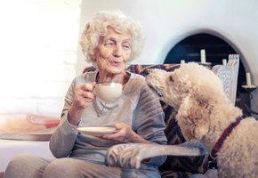 Старикам с болезнью Альцгеймера подарили игрушки. Их реакция восхитительна