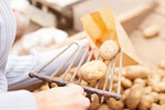 Картофель снижает давление