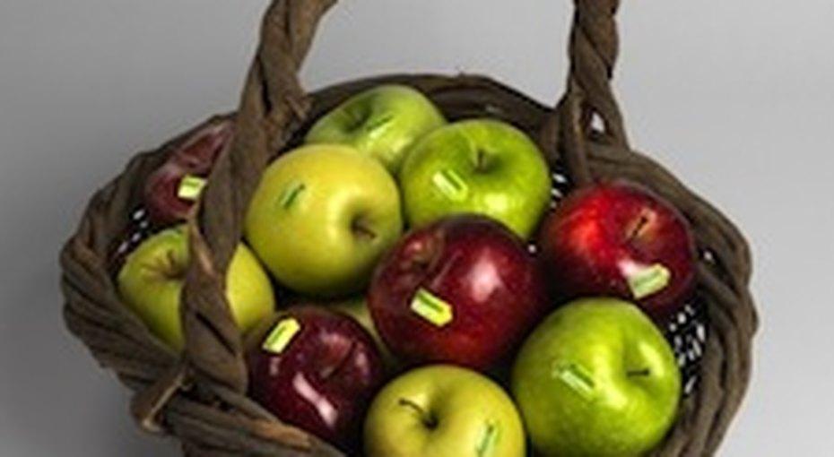 Яблочный праздник длятяжелобольных детей