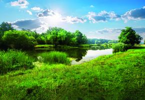 Загородная недвижимость: как выбрать земельный участок подстроительство  cобственного дома?