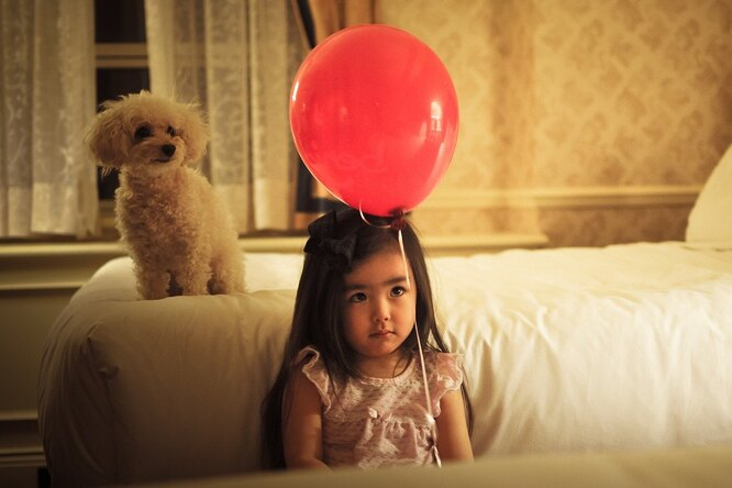 Прилетело! Нажителя Карачаево-Черкессии упал гелевый шар, который послала Санте девочка вАвстрии