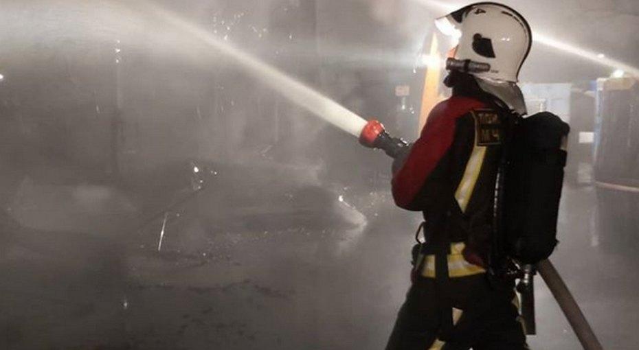 65-летний пенсионер спас возлюбленную иее внука отпожара ценой своей жизни