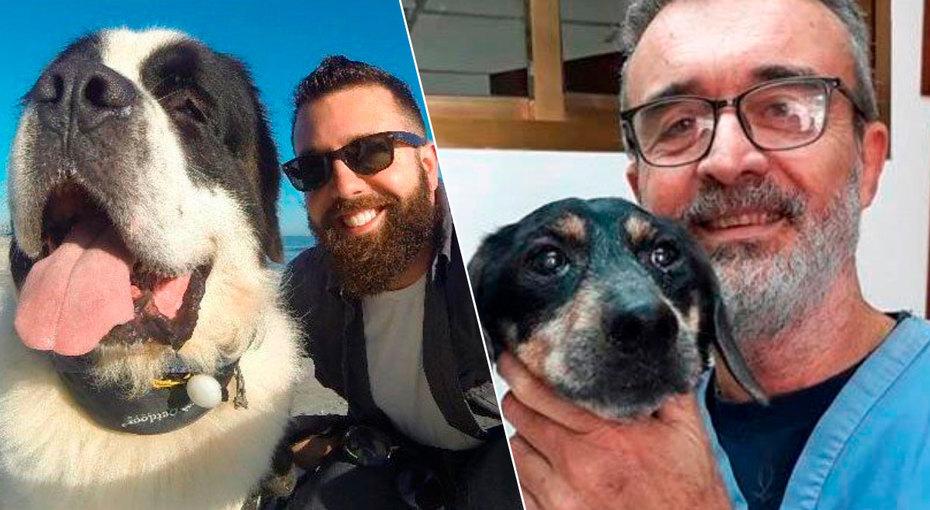 20 трогательных фотографий собак иих хозяев вначале дружбы ичерез много лет
