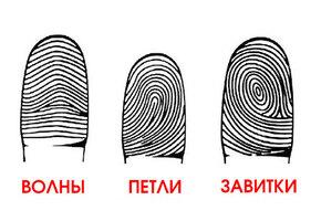 Посмотрите на свои отпечатки пальцев: а вдруг вы гений?